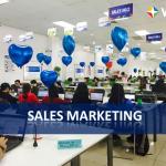 Đông Dương Tuyển Nhân viên Sales Marketing